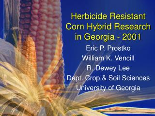 Herbicide Resistant Corn Hybrid Research in Georgia - 2001