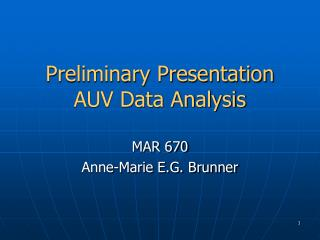 Preliminary Presentation AUV Data Analysis