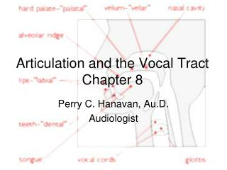 Articulation and the Vocal Tract Chapter 8