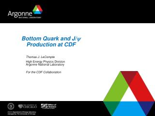 Bottom Quark and J/ y Production at CDF