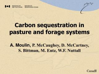 Carbon  sequestration in pasture and forage systems