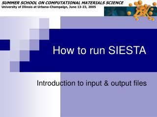How to run SIESTA