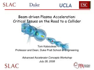 Beam-driven Plasma Acceleration: Critical Issues on the Road to a Collider