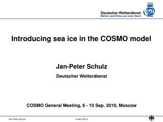 Introducing sea ice in the COSMO model