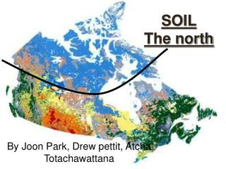SOIL The north