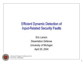 Efficient Dynamic Detection of  Input-Related Security Faults
