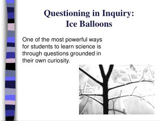 Questioning in Inquiry:  Ice Balloons