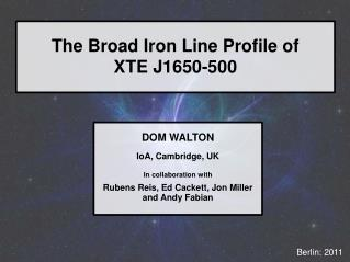 The Broad Iron Line Profile of XTE J1650-500