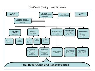 Sheffield CCG High Level Structure