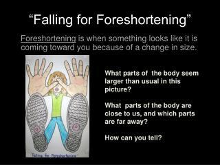 """Falling for Foreshortening"""