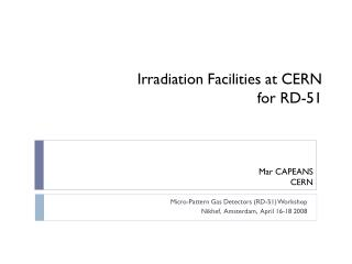 Irradiation Facilities at CERN for RD-51