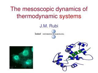 The mesoscopic dynamics of thermodynamic  systems