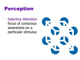 Gestalt Perceptual Psychology