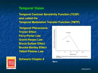 Temporal Vision Temporal Contrast Sensitivity Function (TCSF) also called the