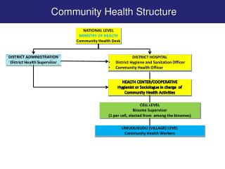 NATIONAL LEVEL MINISTRY OF HEALTH Community Health Desk