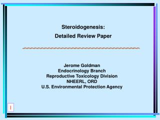 Steroidogenesis: Detailed Review Paper