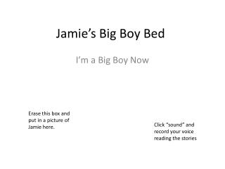 Jamie's Big Boy Bed