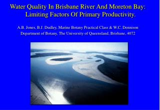 Water Quality In Brisbane River And Moreton Bay: Limiting Factors Of Primary Productivity.