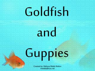 Goldfish and Guppies