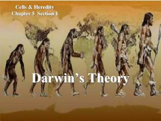 Cells & Heredity Chapter 5 Section 1