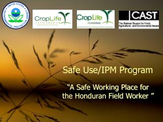 "Safe Use/IPM Program ""A Safe Working Place for the Honduran Field Worker """