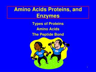Amino Acids Proteins, and Enzymes