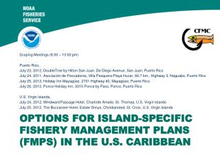 Options for Island-Specific Fishery Management Plans (FMPs) in the U.S. Caribbean