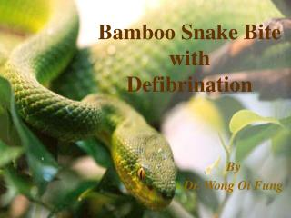 Bamboo Snake Bite  with  Defibrination