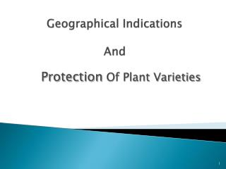 Geographical Indications And