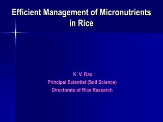 Efficient Management of Micronutrients in Rice