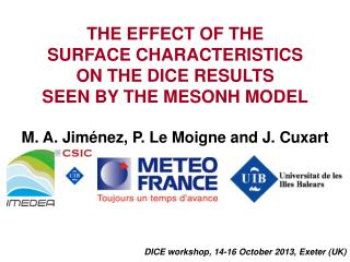THE EFFECT OF THE  SURFACE CHARACTERISTICS  ON THE DICE RESULTS  SEEN BY THE MESONH MODEL