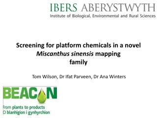 Screening for platform chemicals in a novel  Miscanthus sinensis  mapping  family