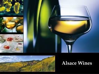 Alsace Wines