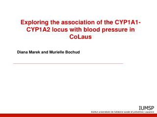 Exploring the association of the CYP1A1-CYP1A2 locus with blood pressure in CoLaus