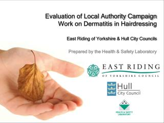 Evaluation of Local Authority Campaign  Work on Dermatitis in Hairdressing