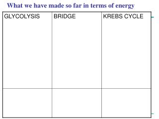 What we have made so far in terms of energy