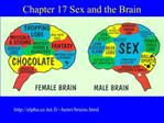 Chapter 17 Sex and the Brain