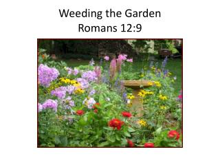 Weeding the Garden Romans 12:9