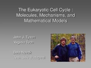 The Eukaryotic Cell Cycle : Molecules, Mechanisms, and Mathematical Models
