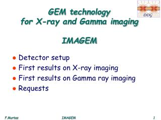 GEM technology  for X-ray and Gamma imaging IMAGEM