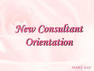New Consultant Orientation