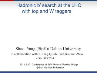 Hadronic b' search at the LHC            with top and W taggers