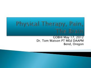 Physical Therapy, Pain, The Brain