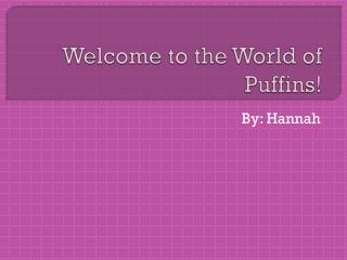 Welcome to the World of Puffins!