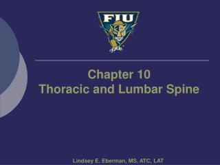 Chapter 10 Thoracic and Lumbar Spine