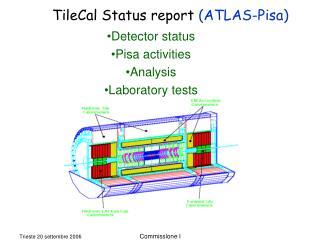 Detector status Pisa activities Analysis Laboratory tests