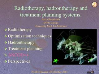 Radiotherapy Optimization techniques Hadrontherapy Treatment planning ANCOD++ Perspectives