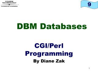 DBM Databases
