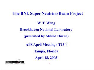 The BNL Super Neutrino Beam Project