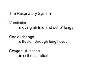 The Respiratory System Ventilation 	moving air into and out of lungs Gas exchange